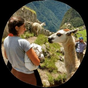 Viajando al español Llama