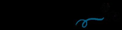 Club de viajeros logo